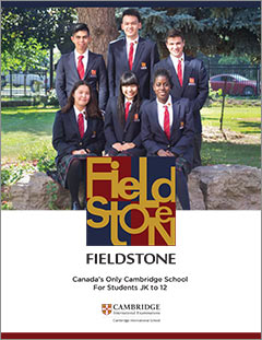 Fieldstone Brochure